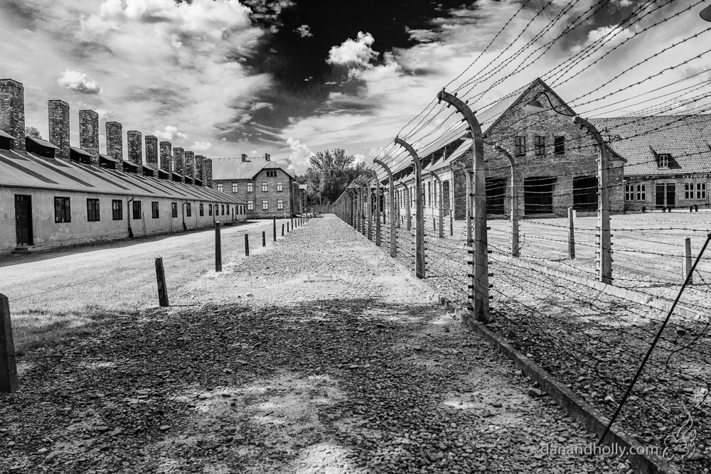 an analysis of the history and characteristics of nazi concentration camps Browse history holocaust and genocide intersubjective dimensions of violence in the my argument will center on the nazi concentration and death camps.