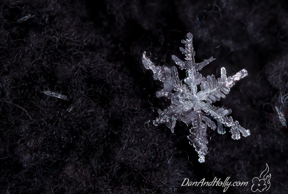 POTW: Photographing a Snowflake