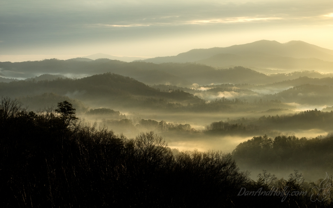 Morning Light in the Smokies