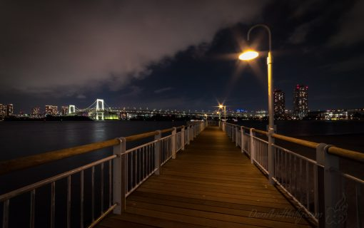 Odaiba Kaihin-Koen Park at Night