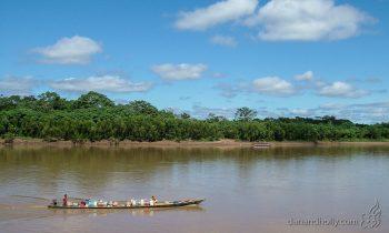 POTW: Life in the Amazon