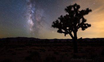 The Milky Way Over Joshua Tree – Part 2