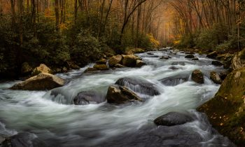The End of Fall Colors at Big Creek