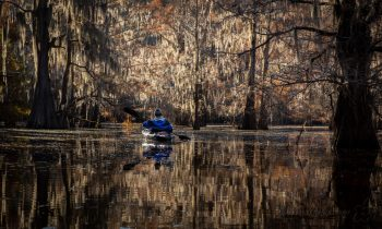 A Photo Essay of the Bayous of East Texas