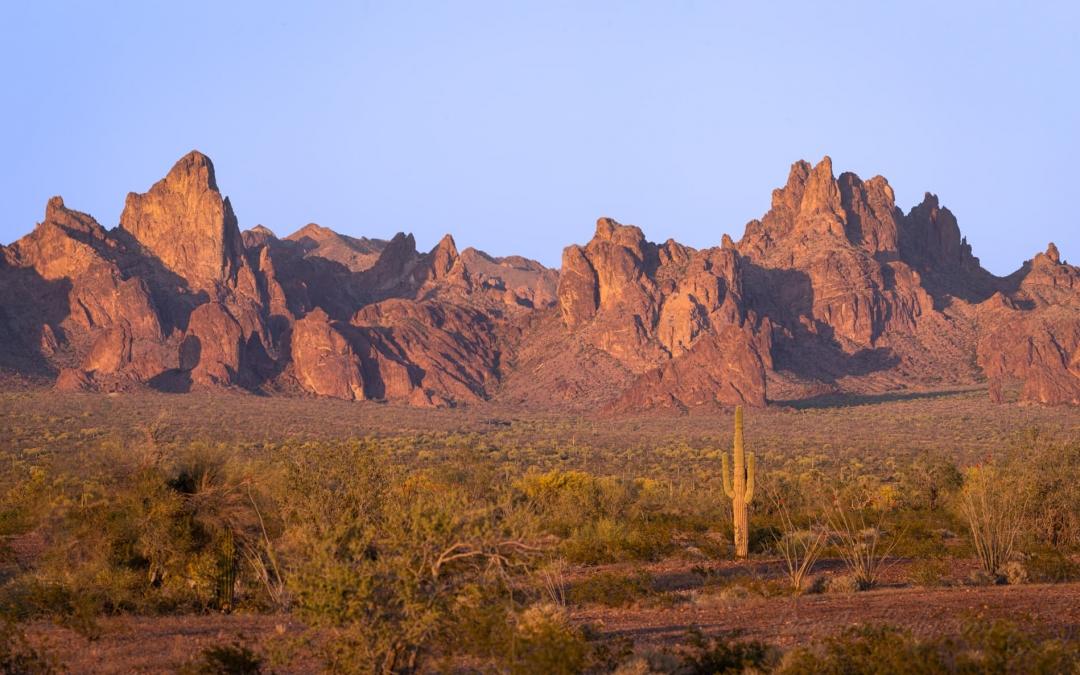 Late Light in the Desert