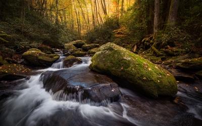 Up Sam's Creek