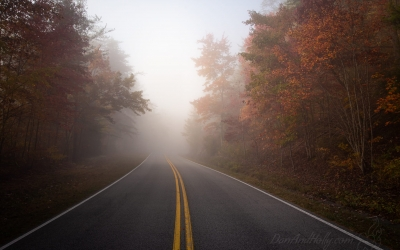 Driving off into the Fog