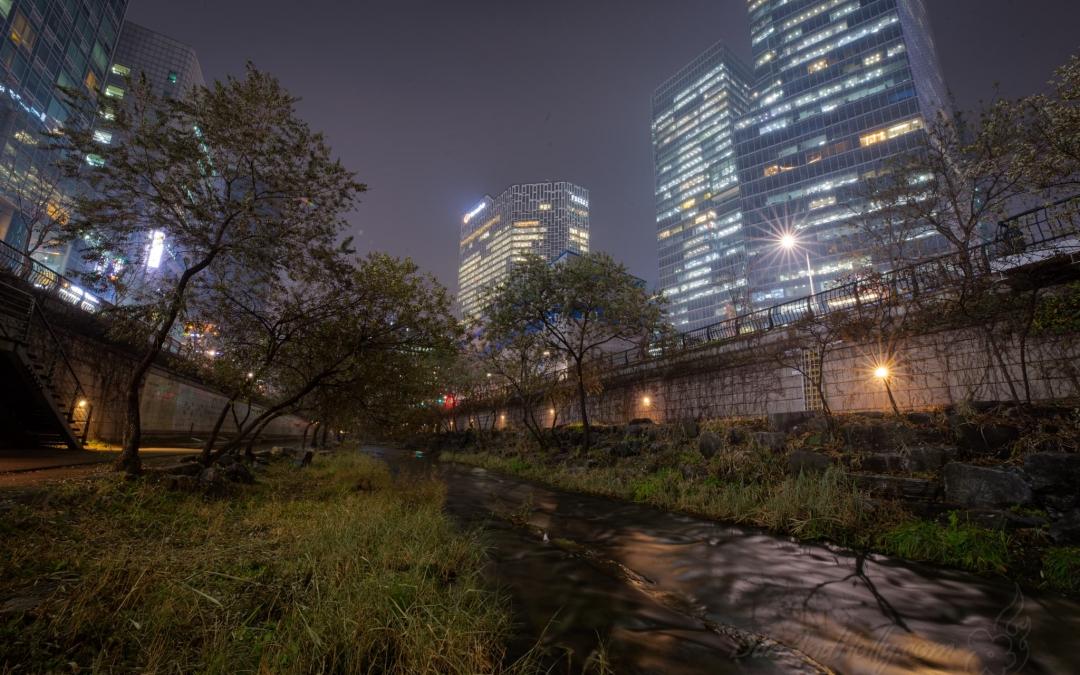Cheonggyecheon – Nature Restored to the City