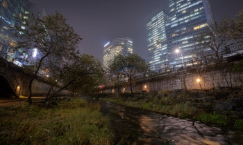 Cheonggyecheon – Nature Restored to the City