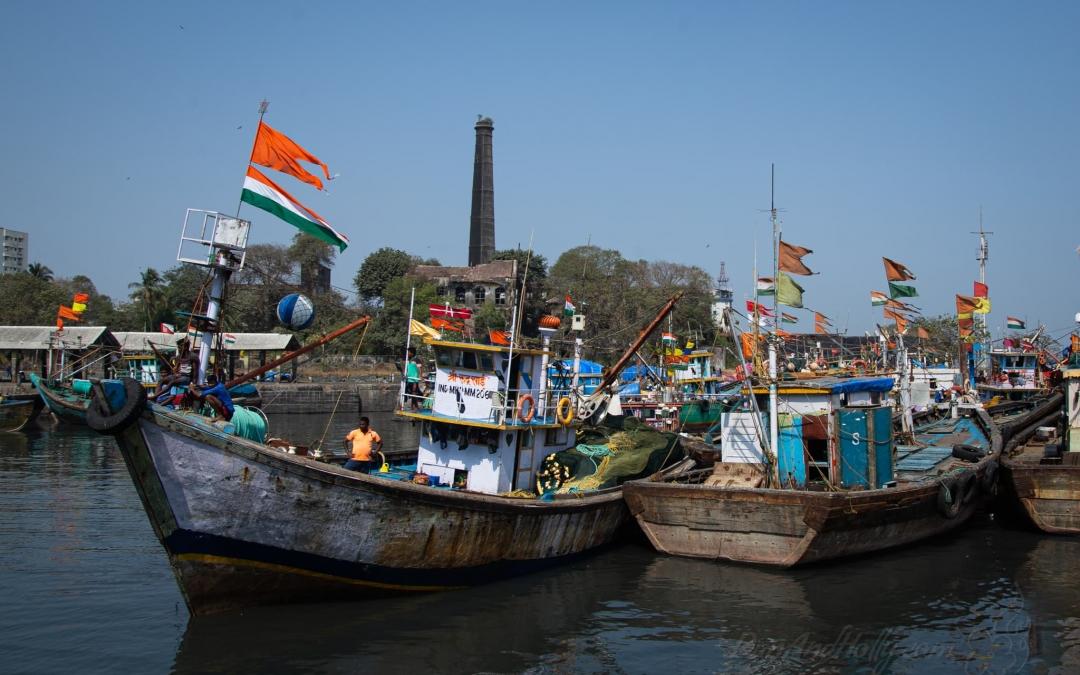 Indian Fishing Boats