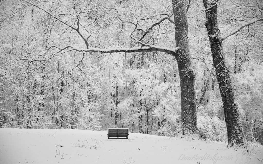 A Seat in the Snow
