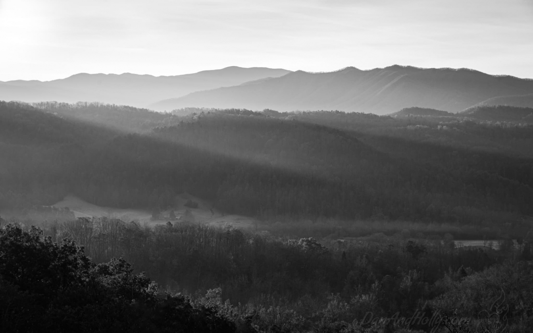 Progression of Light in the Smokies